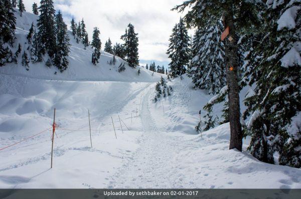 _Mt Seymour Snowshoe Trail Approach