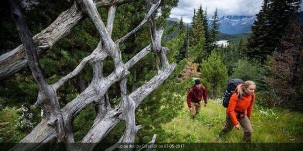 _great divide trail