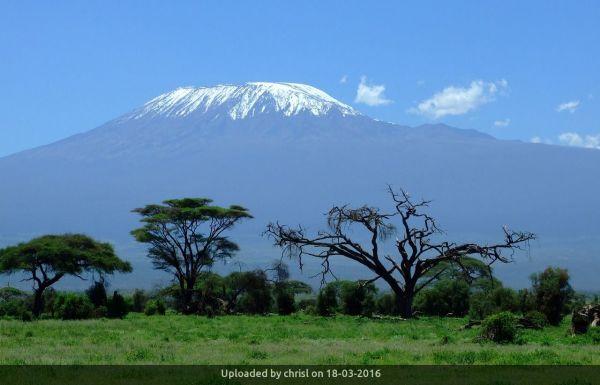 _Kilimanjaro