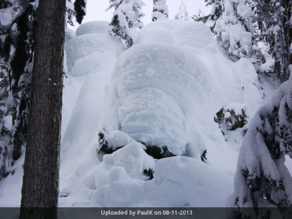 _Rose Trail: Snow pillows near 1100 meters in mid-winter