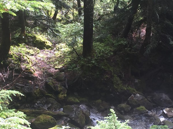 Possible new creek crossing